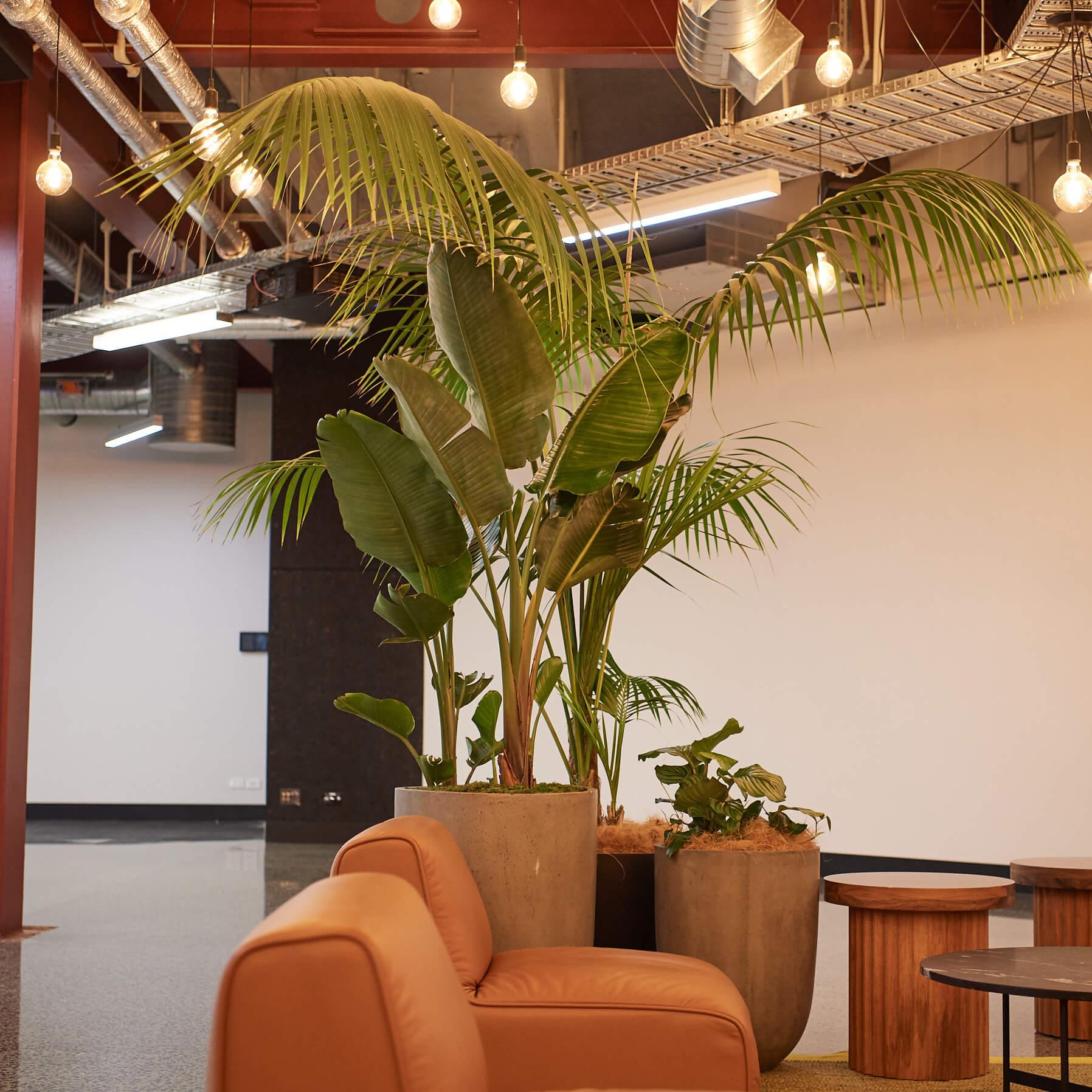 portfolio-coworking-spaces-bhive-image6