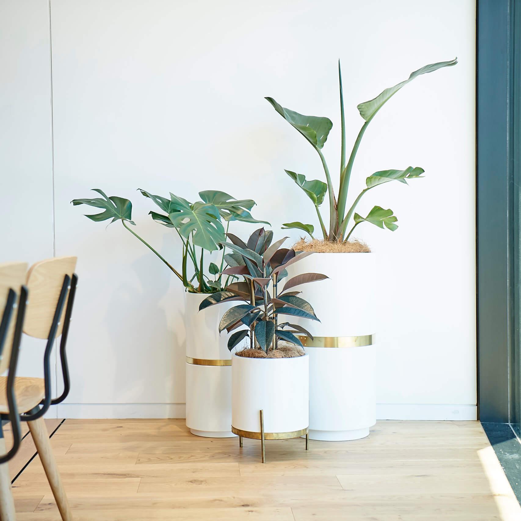 portfolio-coworking-spaces-generatorwynyardquarter-image2