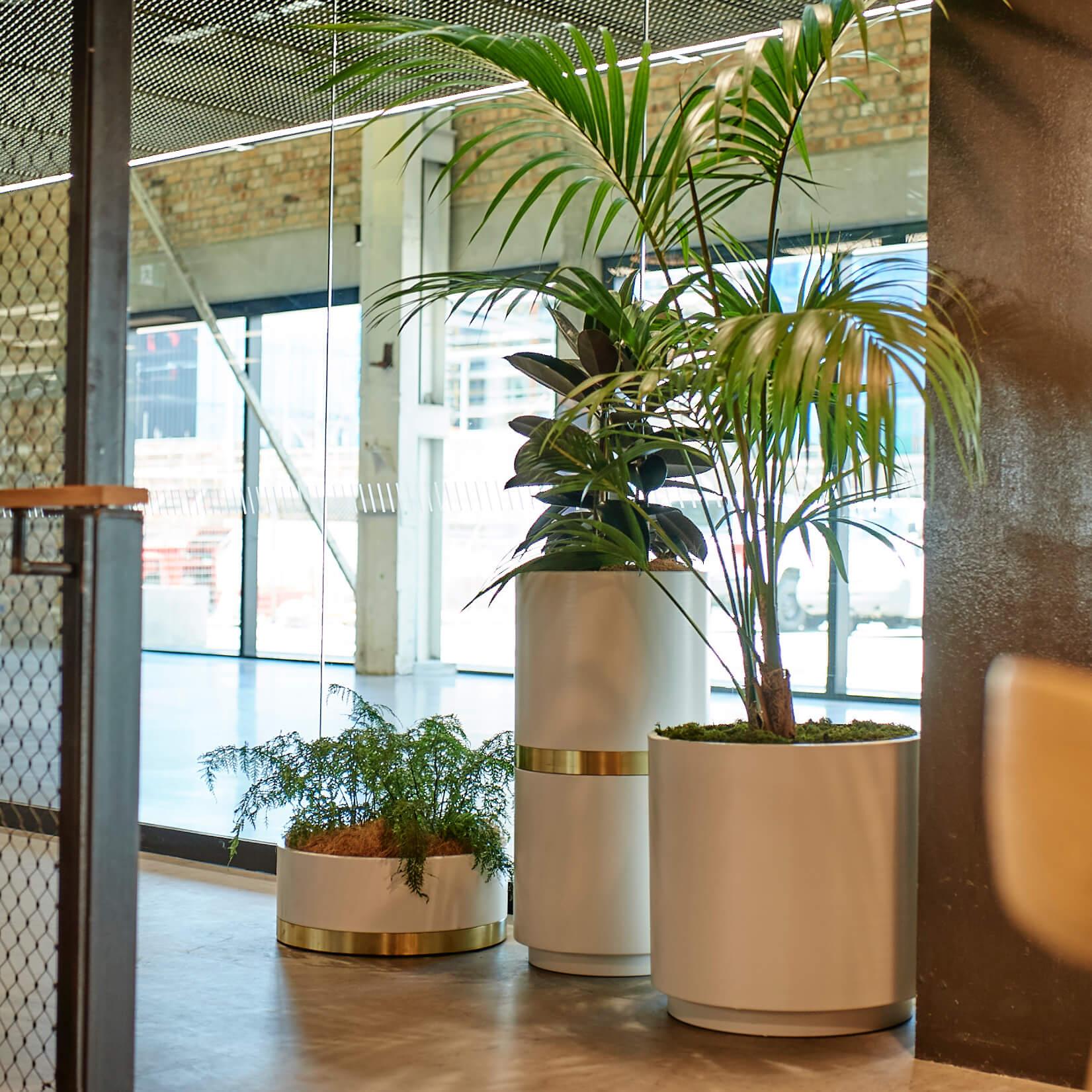 portfolio-coworking-spaces-generatorwynyardquarter-image6