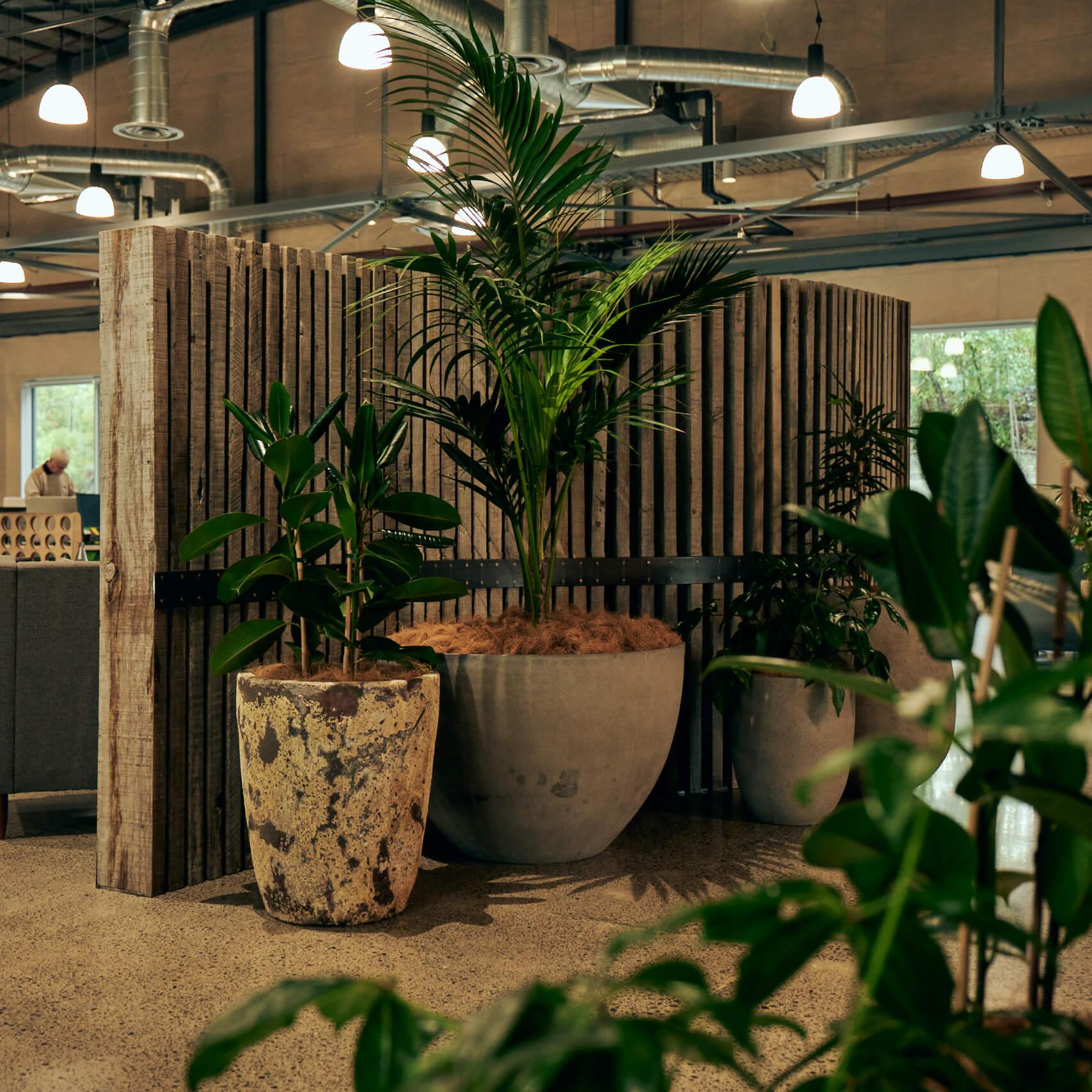 portfolio-coworking-spaces-thehangar-image2