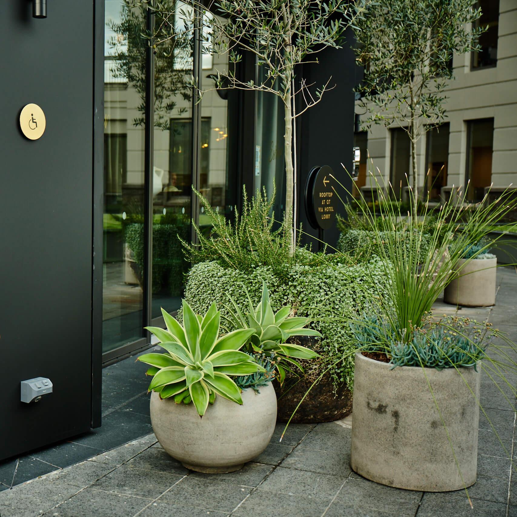 portfolio-hotels-and-apartments-qthotel-image2