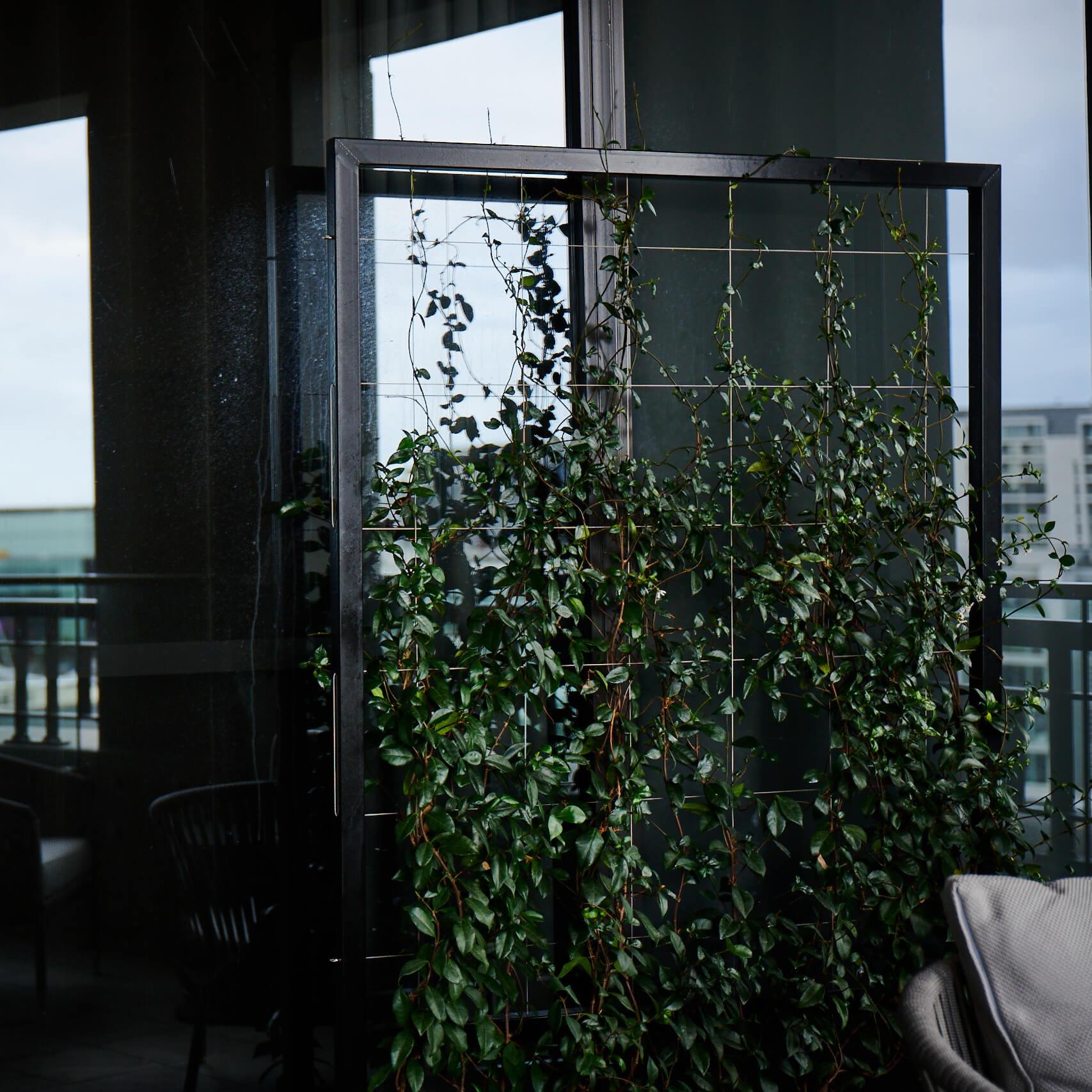 portfolio-hotels-and-apartments-qthotel-image5