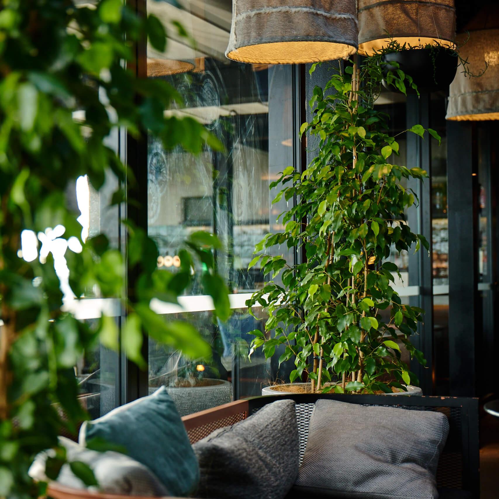 portfolio-hotels-and-apartments-qthotel-image8