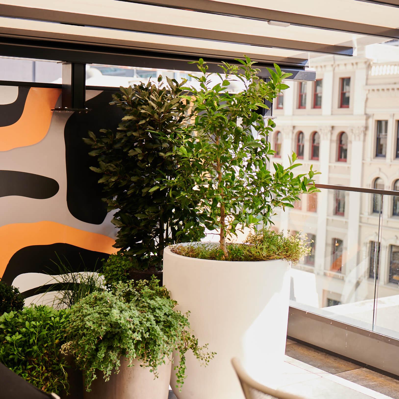 portfolio-hotels-and-apartments-sohotel-image6