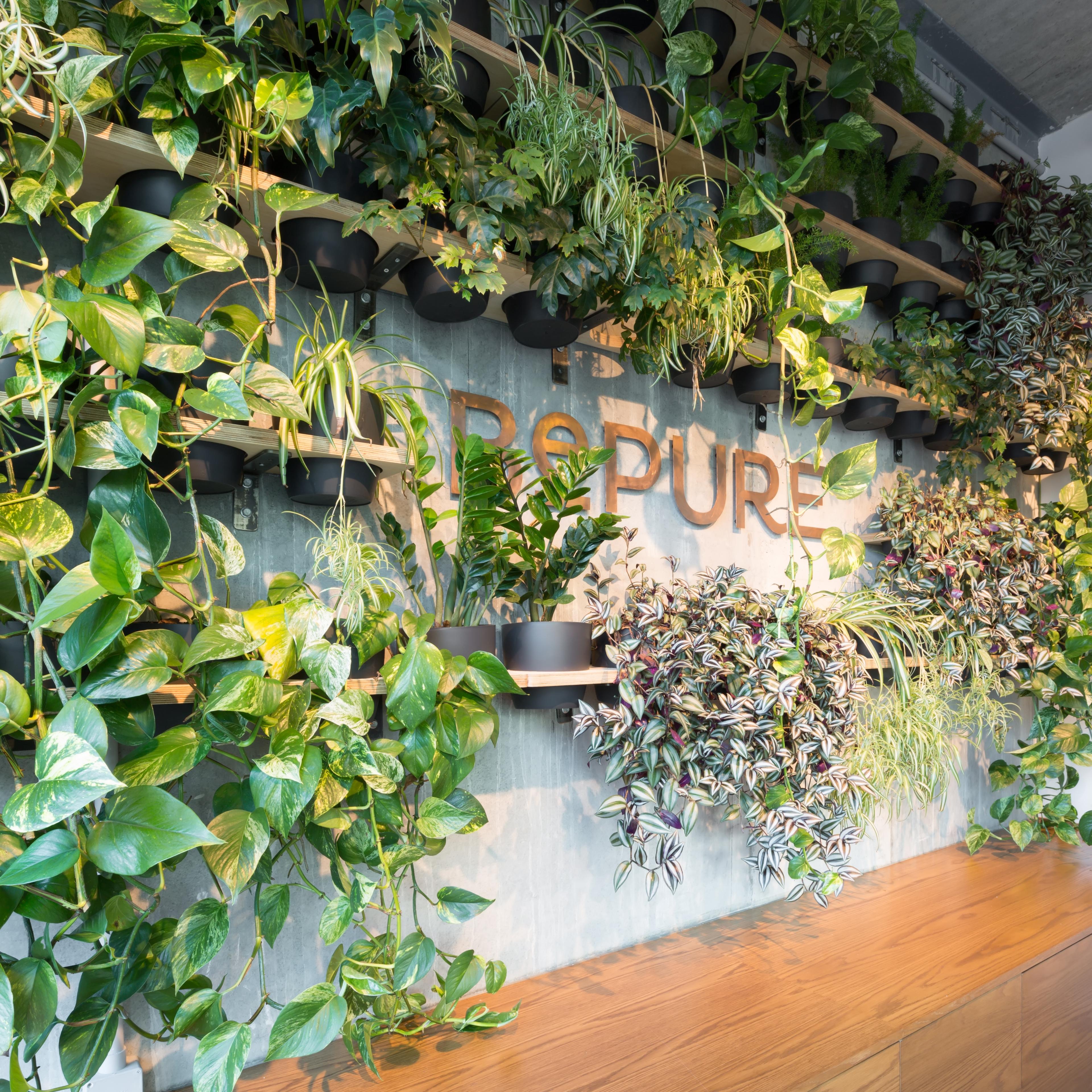 portfolio-offices-spaces-bepure-image3