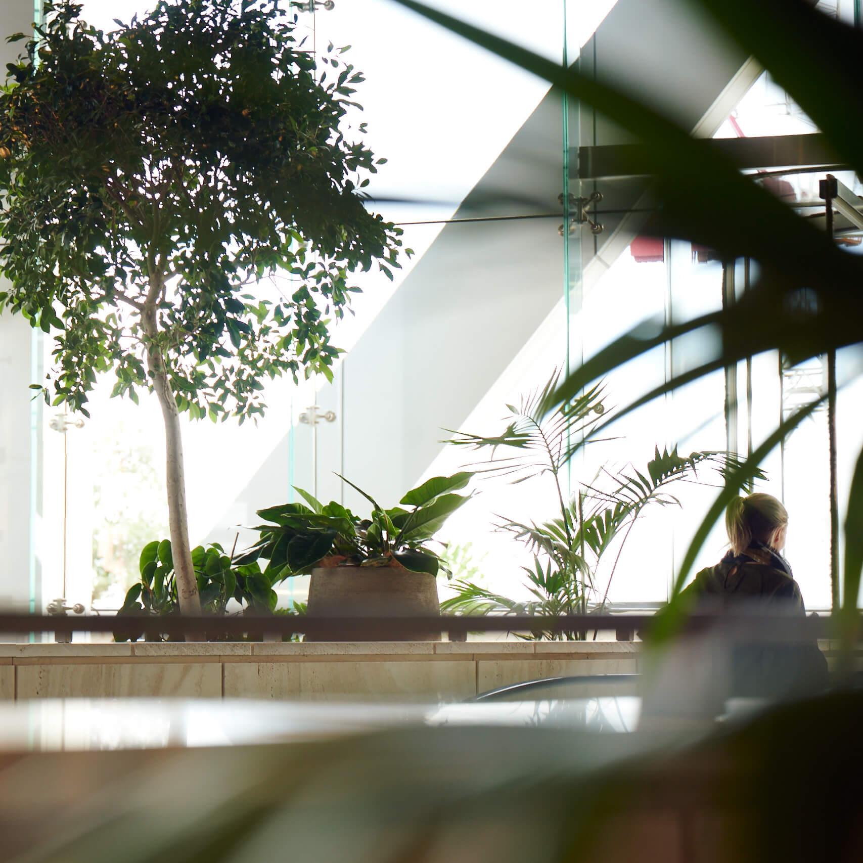 portfolio-offices-spaces-commercialbay-image3