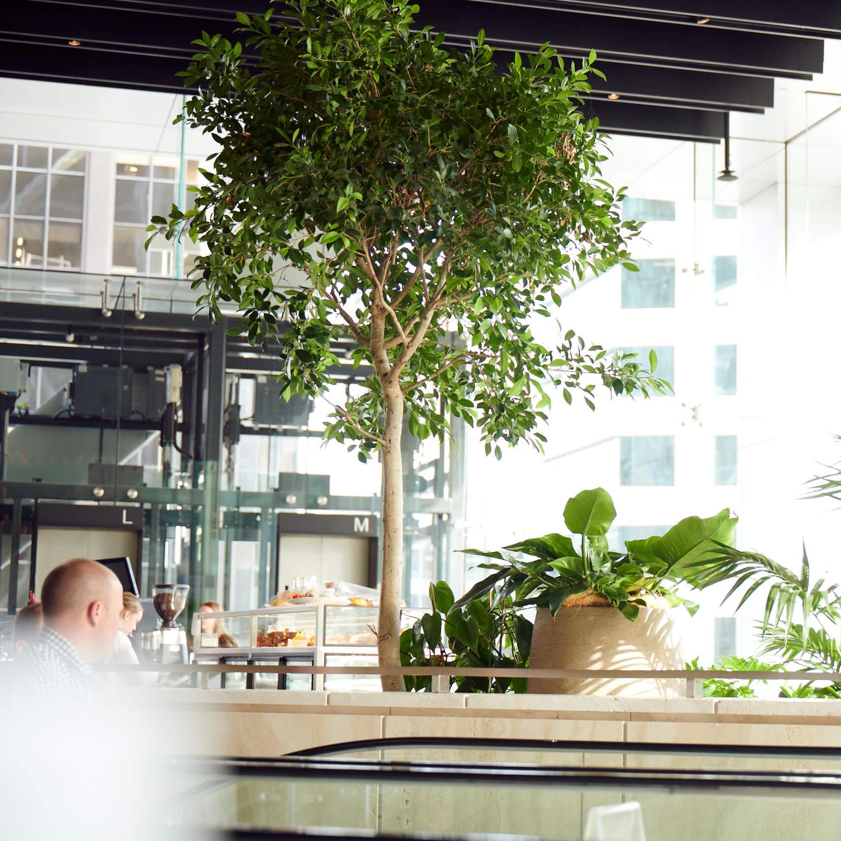 portfolio-offices-spaces-commercialbay-image6