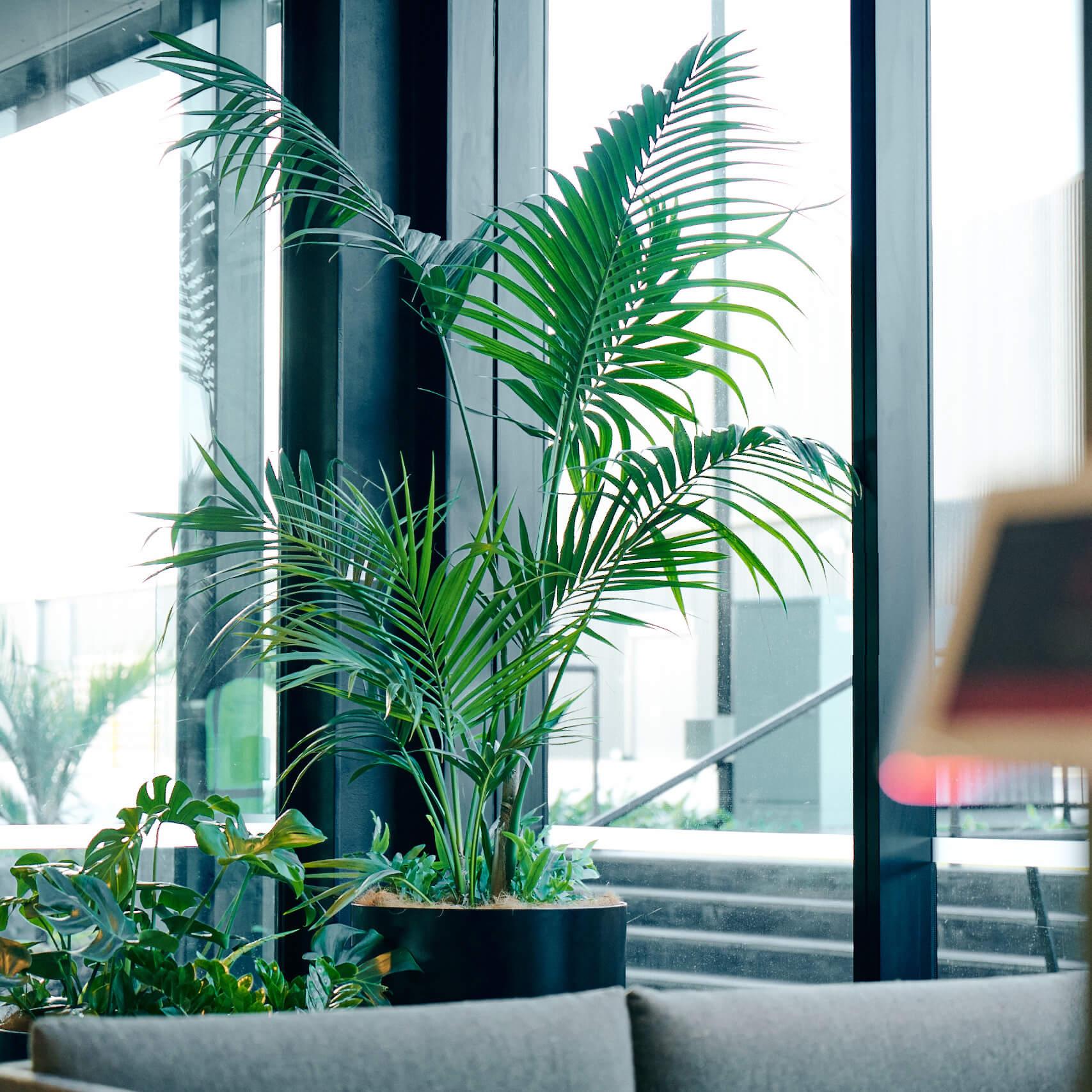 portfolio-offices-spaces-foodstuffs-image6