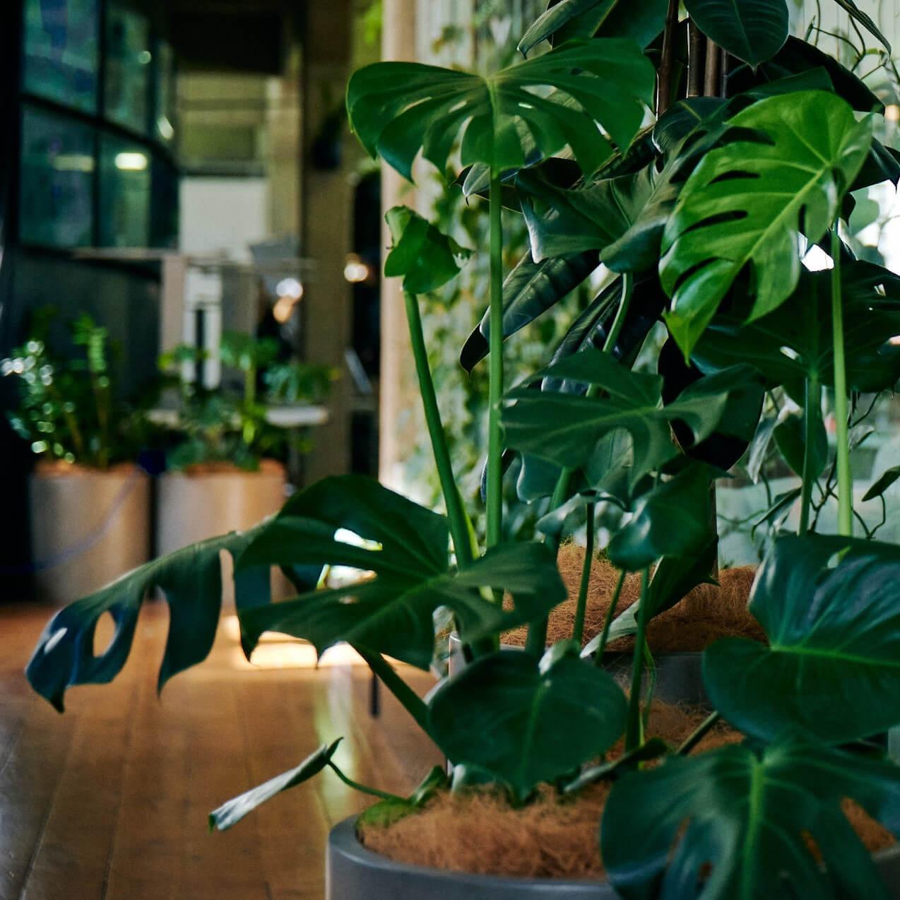portfolio-offices-spaces-halter-image2