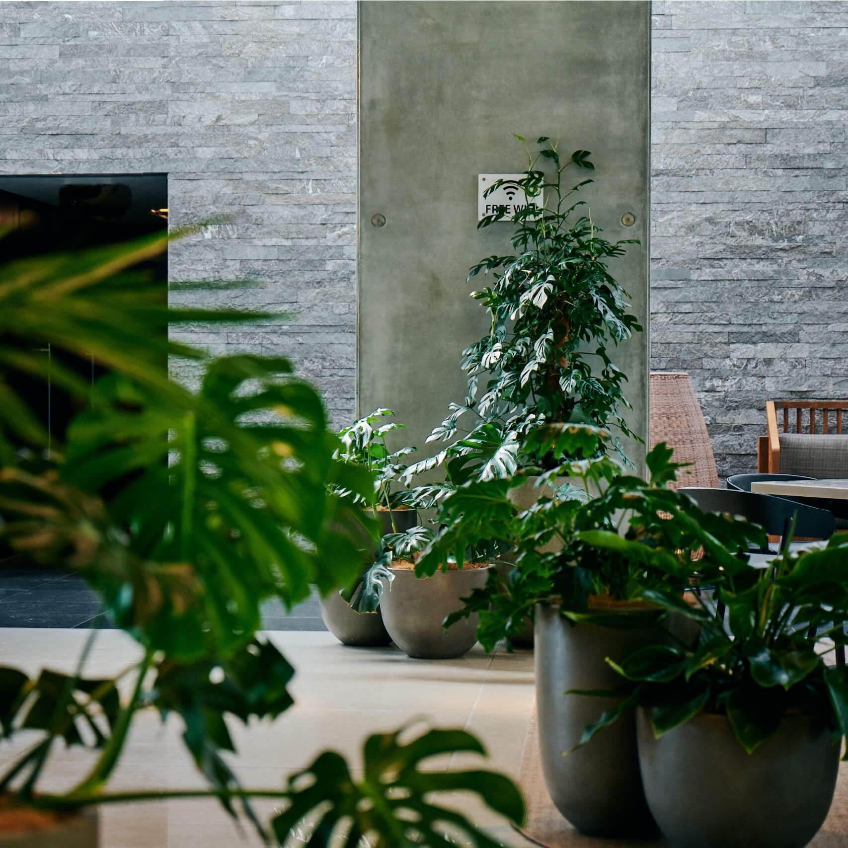 portfolio-offices-spaces-lumley-image2