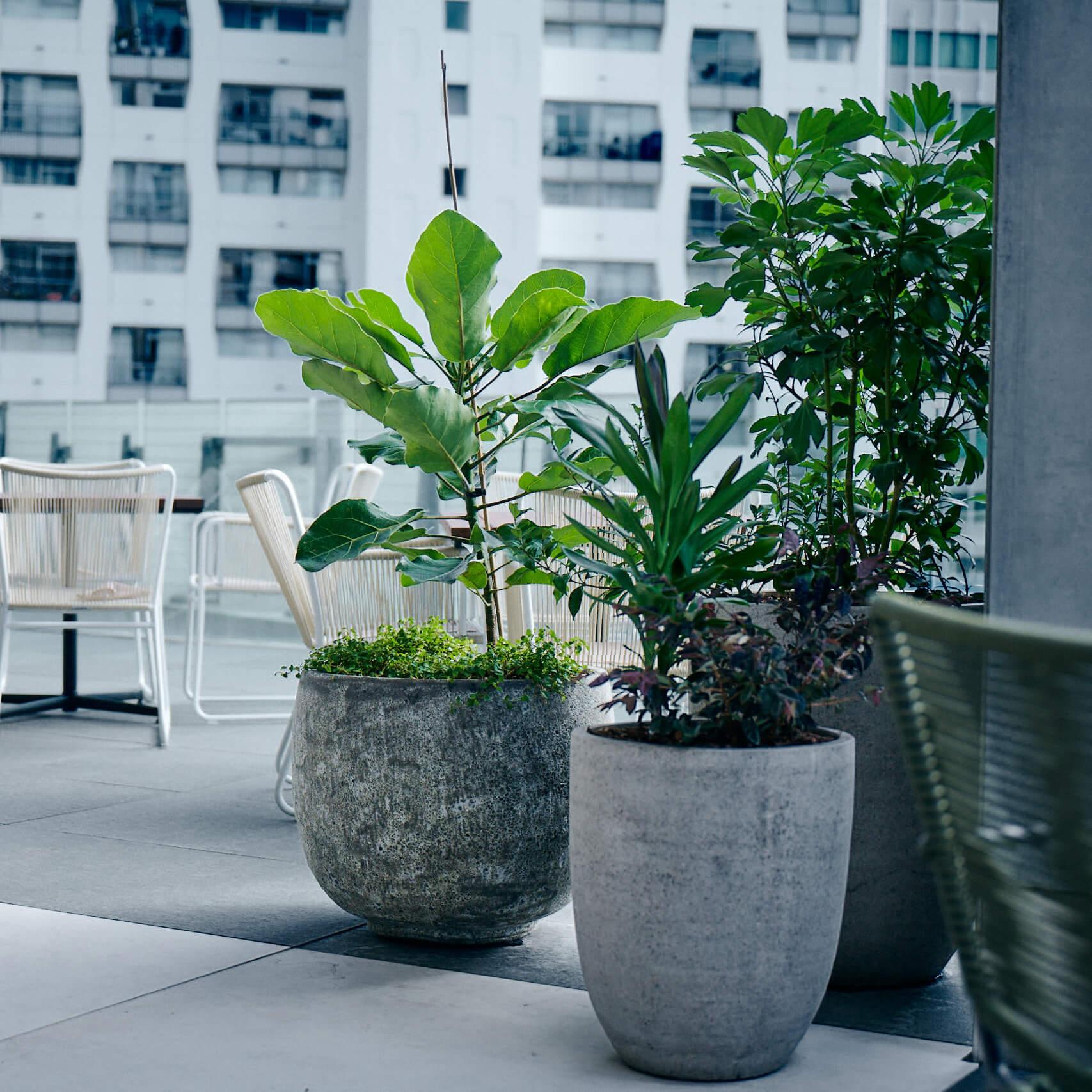 portfolio-offices-spaces-lumley-image6