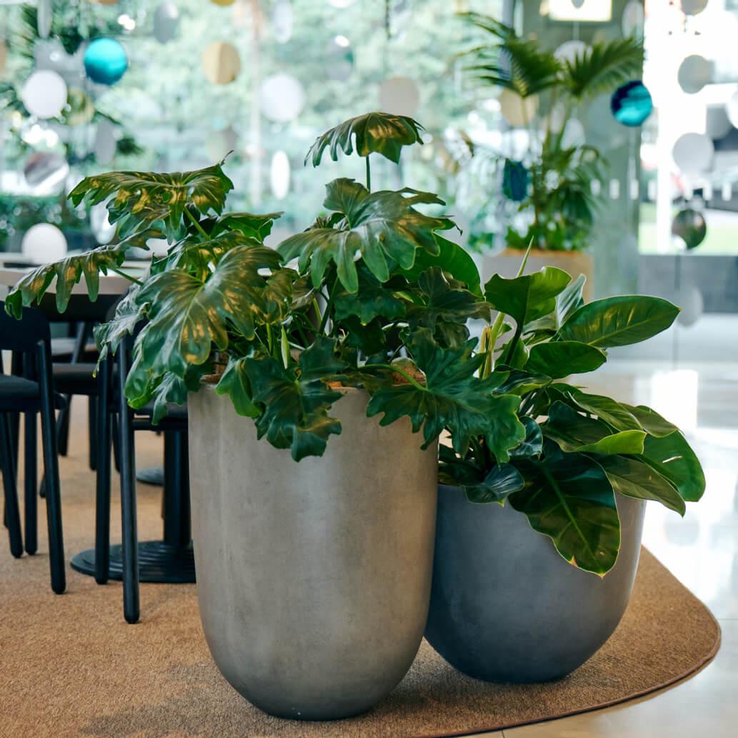 portfolio-offices-spaces-lumley-image8