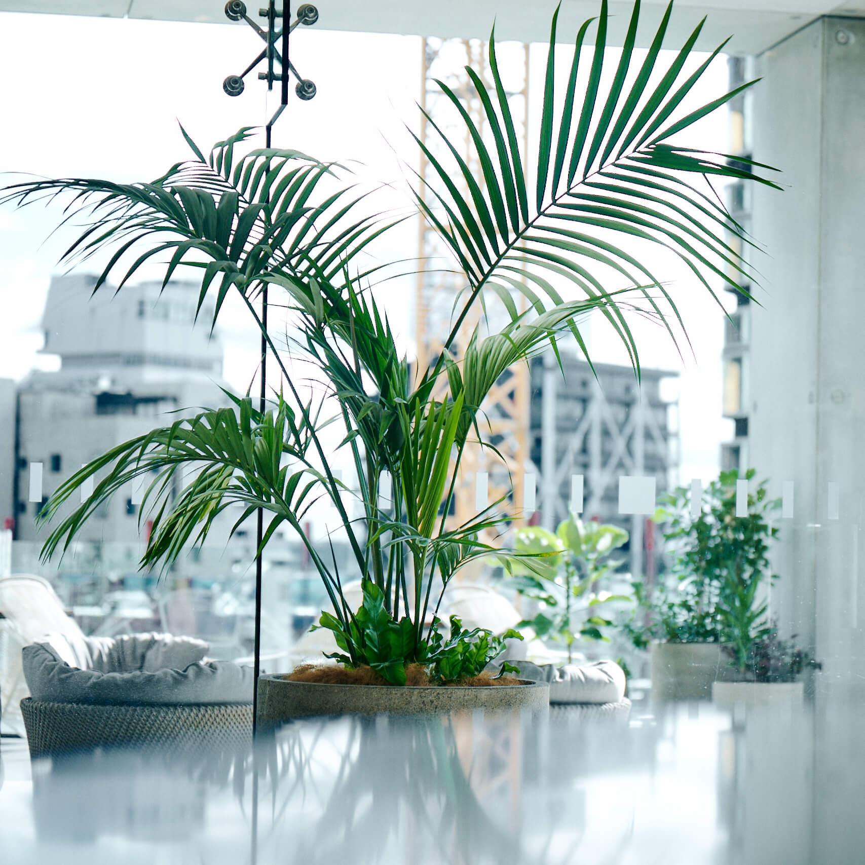 portfolio-offices-spaces-lumley-image9