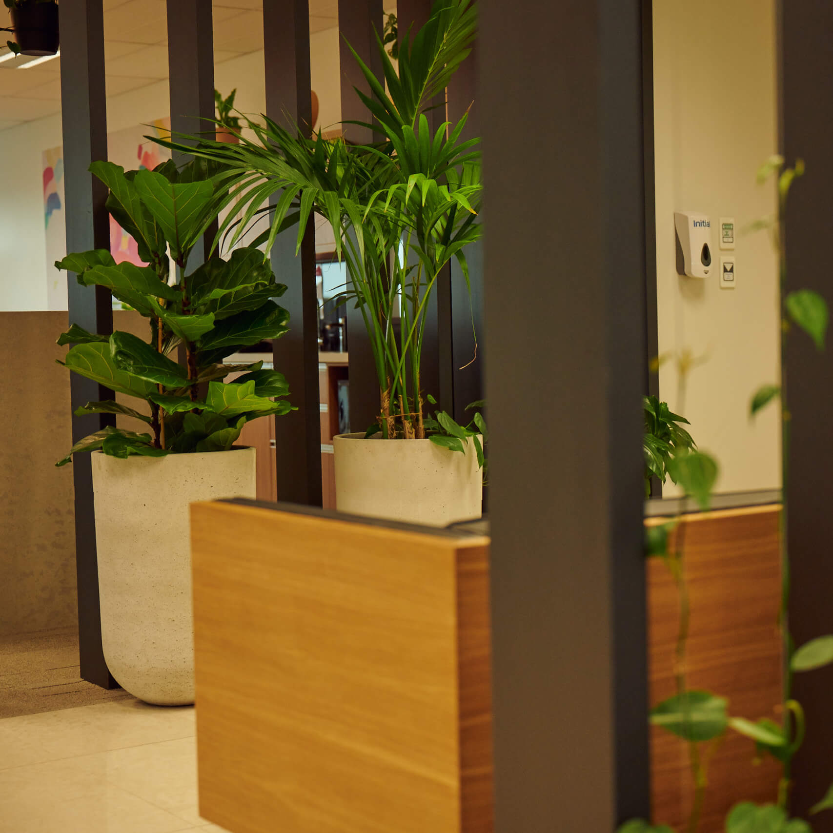 portfolio-offices-spaces-martinjenkins-image3