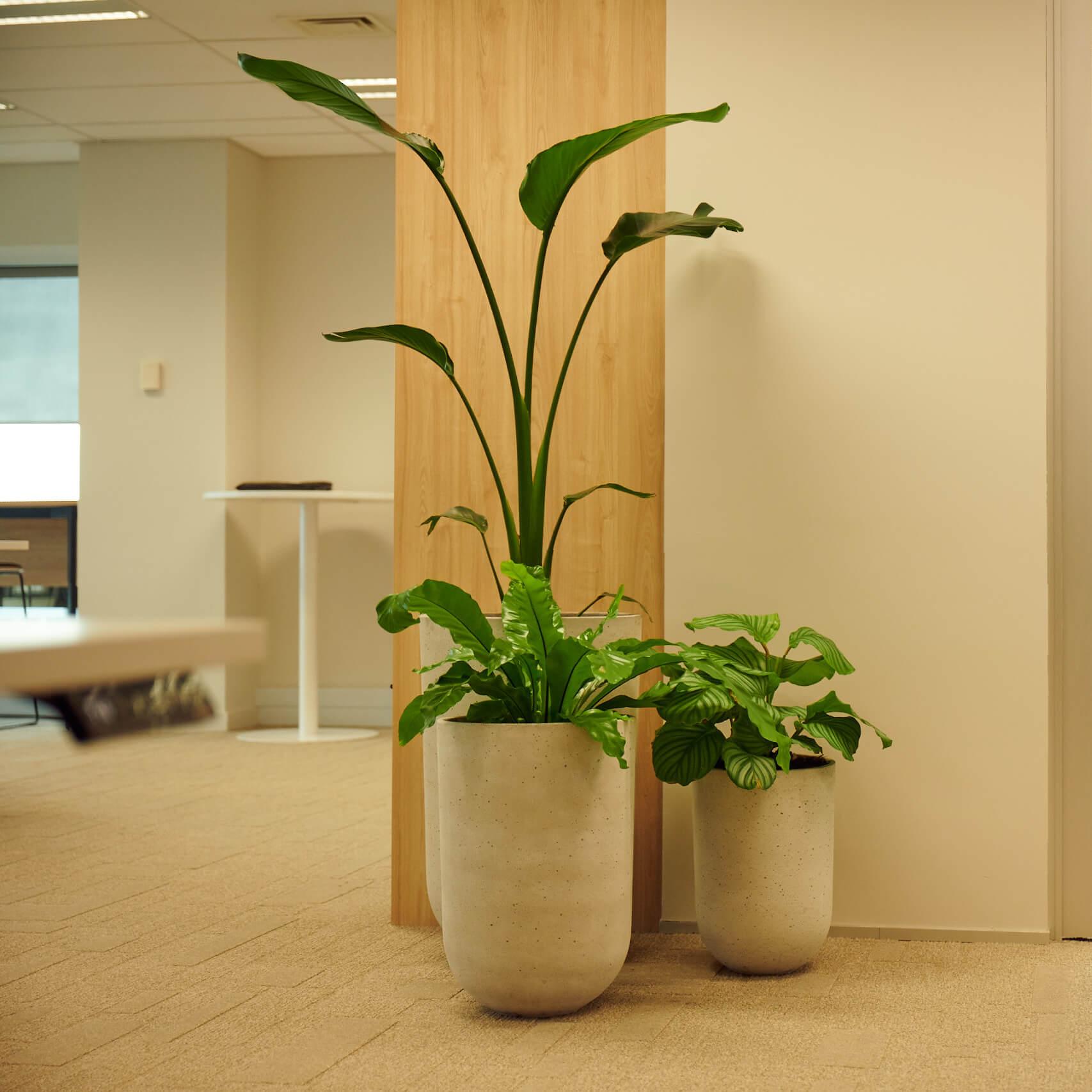 portfolio-offices-spaces-martinjenkins-image5