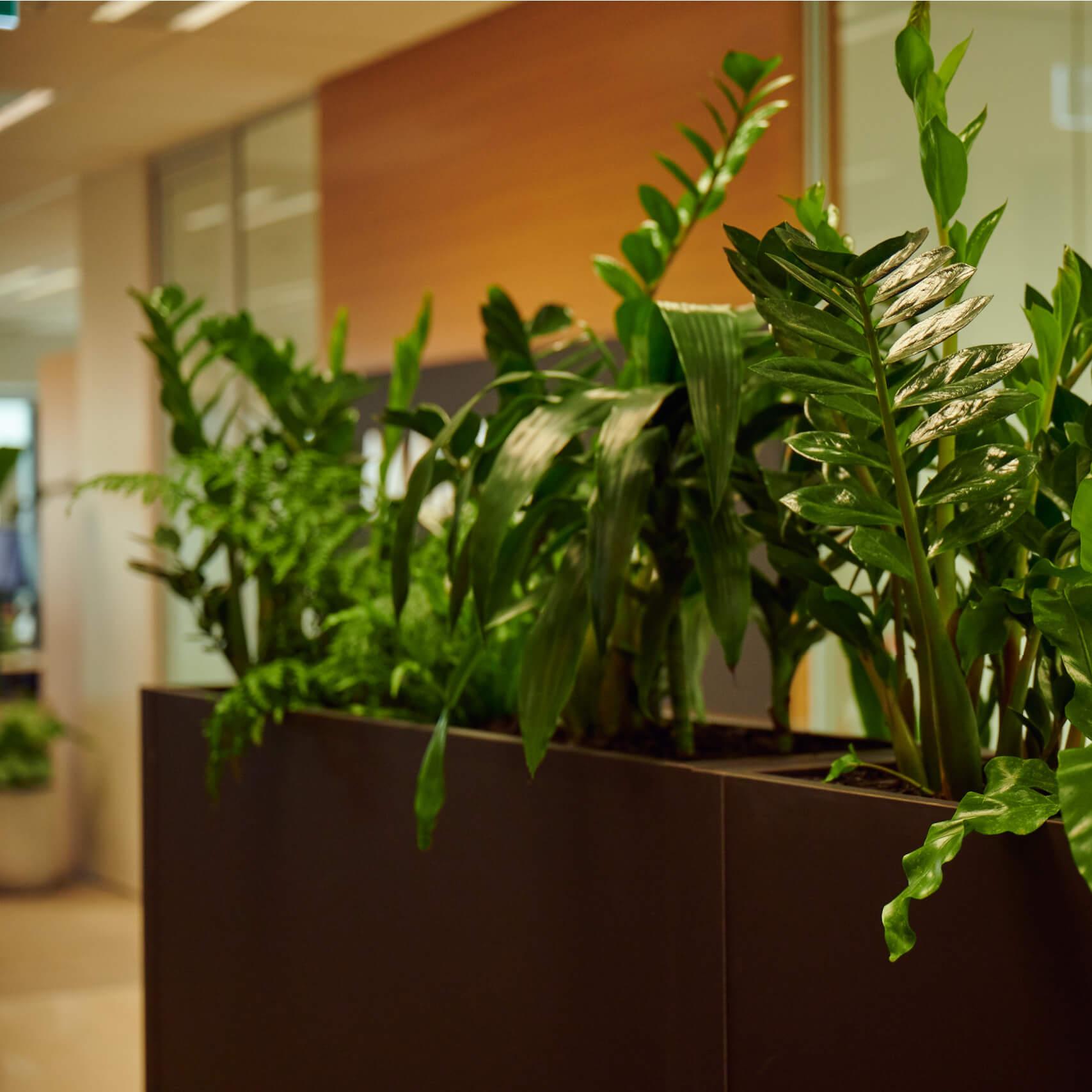 portfolio-offices-spaces-martinjenkins-image6