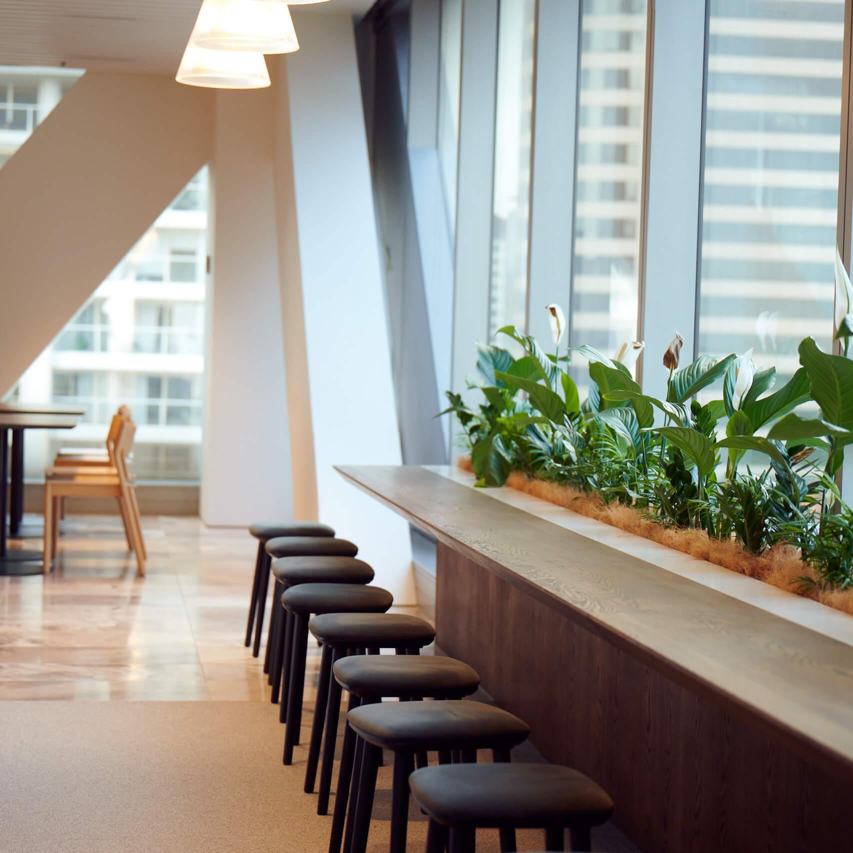 portfolio-offices-spaces-minterellison-image6