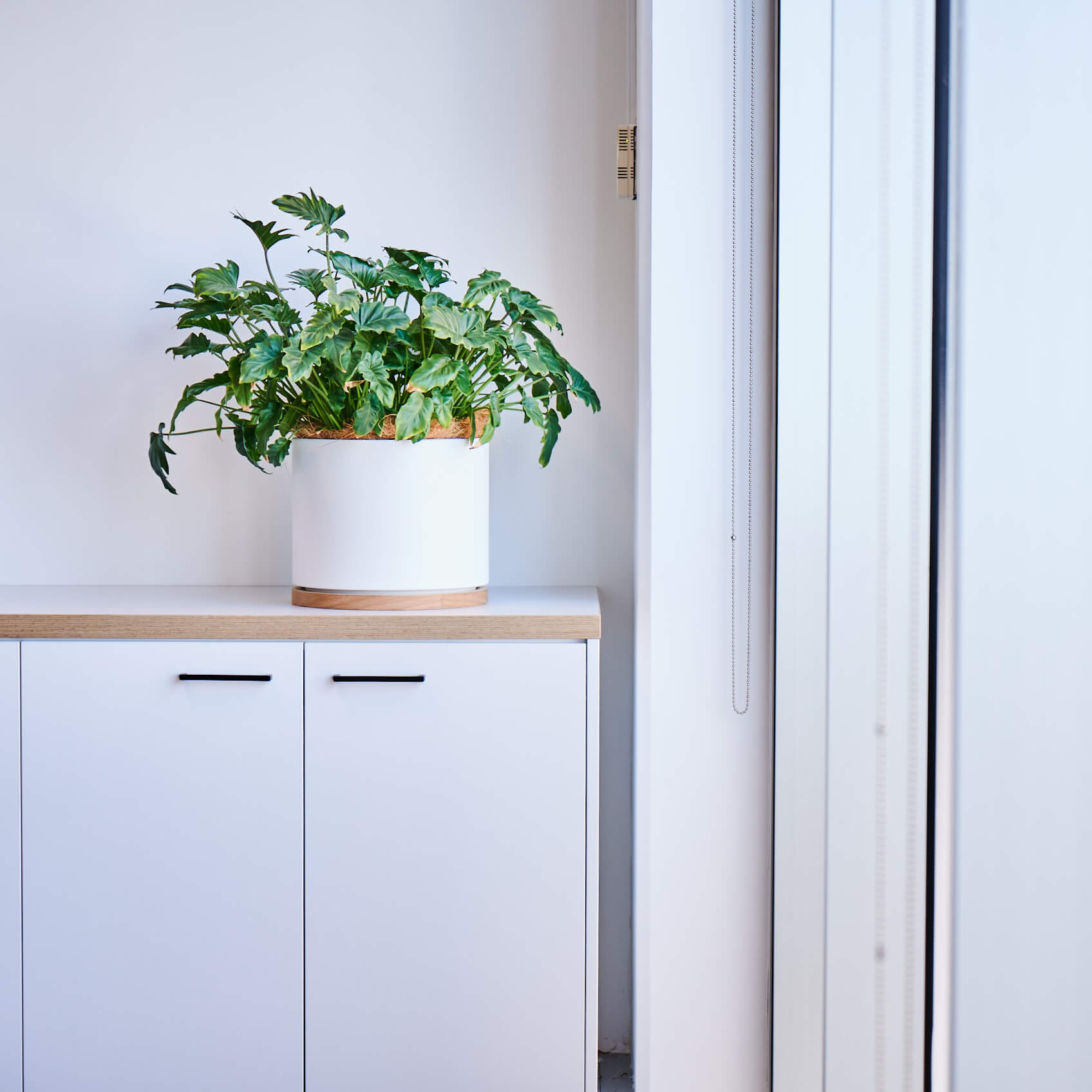 portfolio-offices-spaces-mitchellvranges-image3