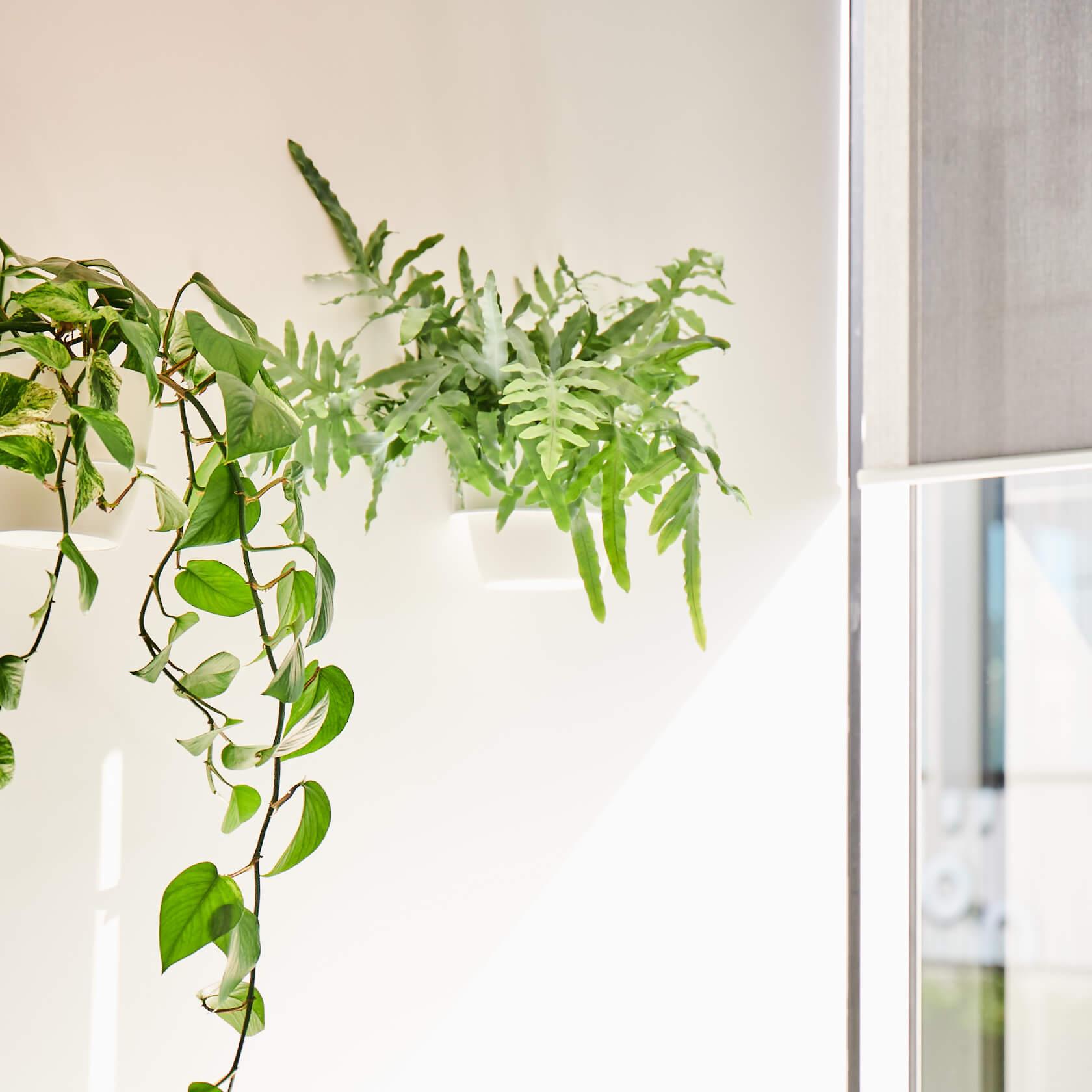 portfolio-offices-spaces-mitchellvranges-image5