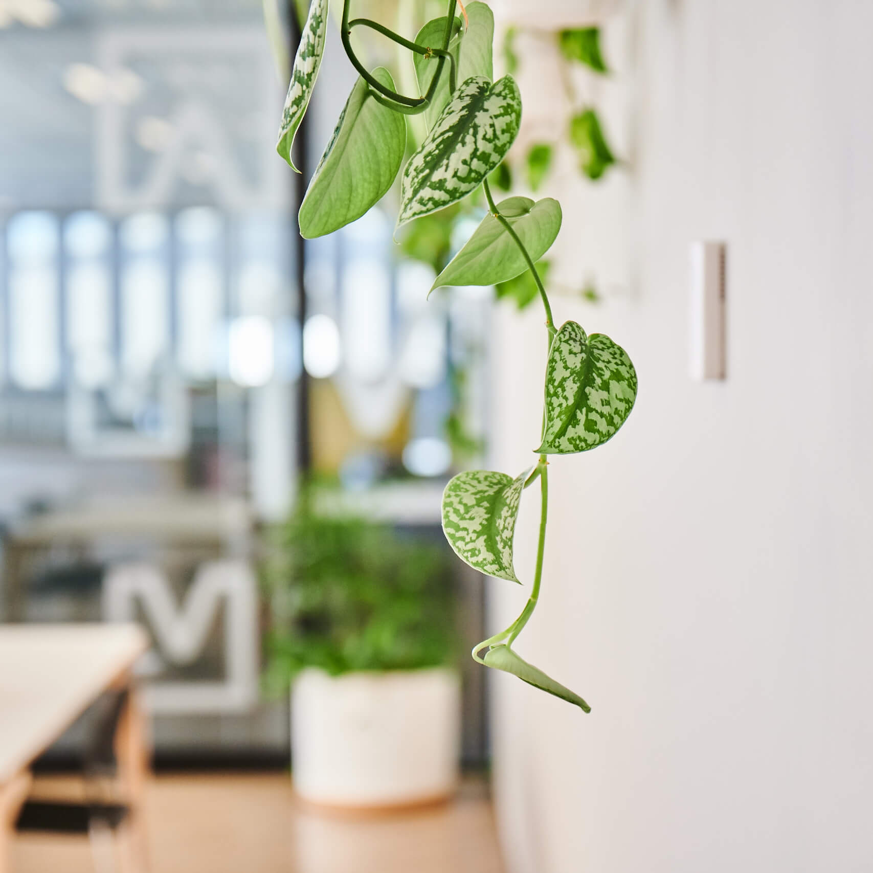 portfolio-offices-spaces-mitchellvranges-image6