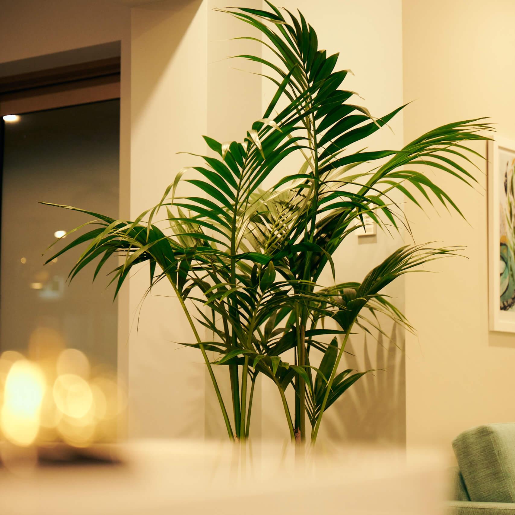portfolio-offices-spaces-recentre-image6