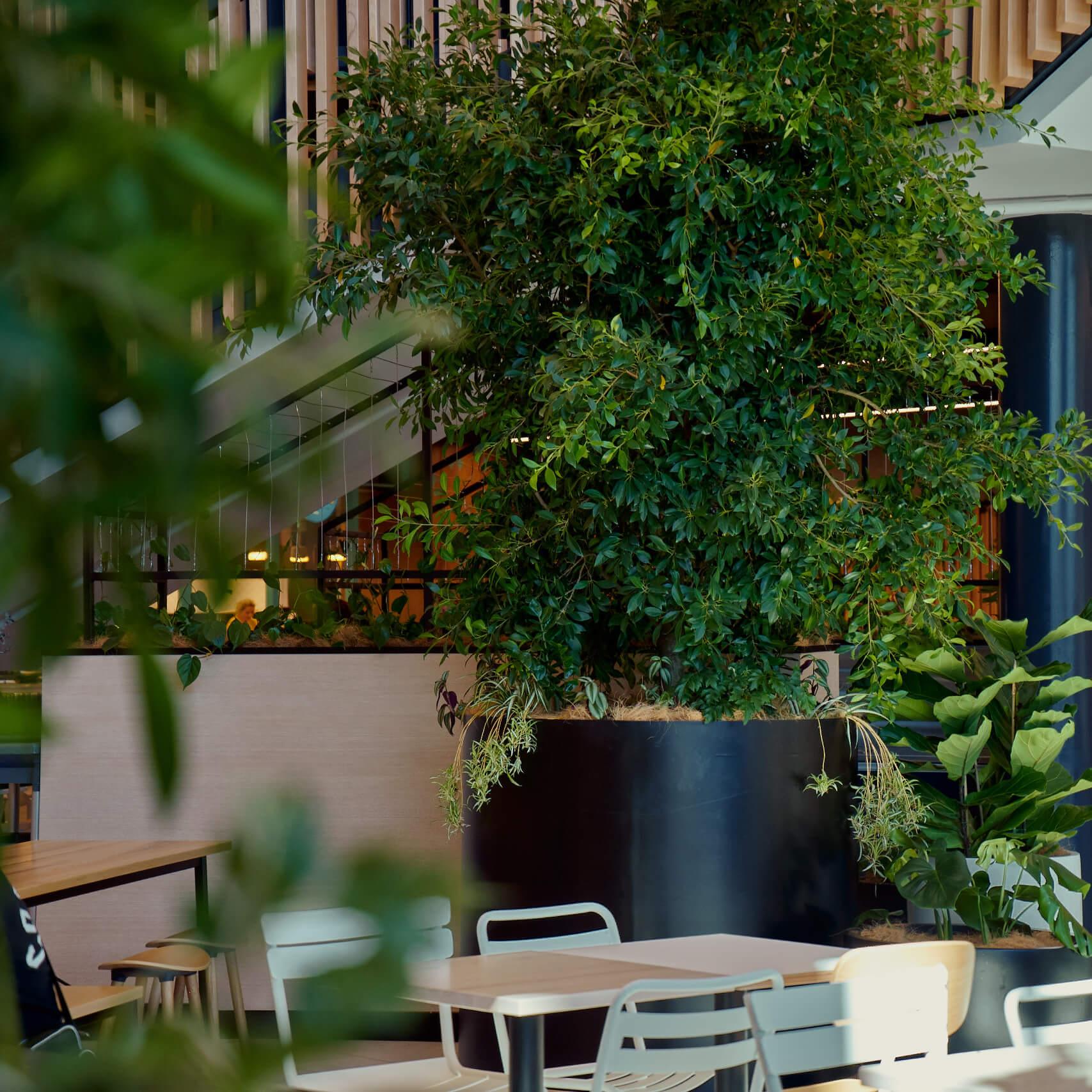 portfolio-retail-destinations-taurangacrossing-image6