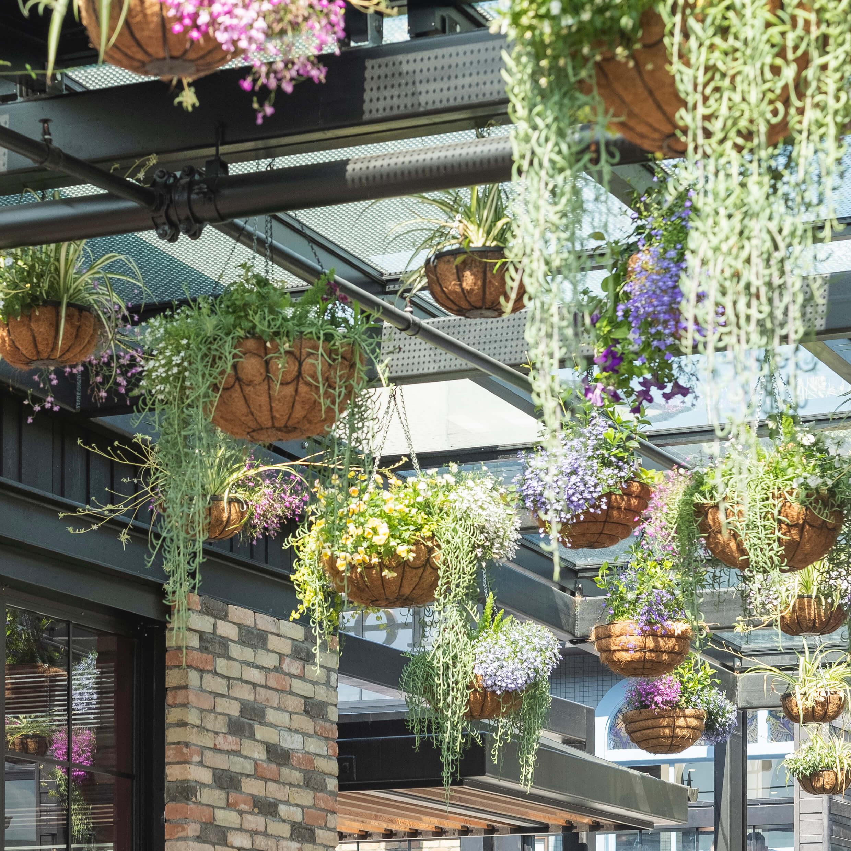 portfolio-retail-destinations-westfieldnewmarket-image5